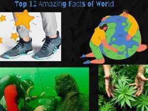 amazing-facts-of-world