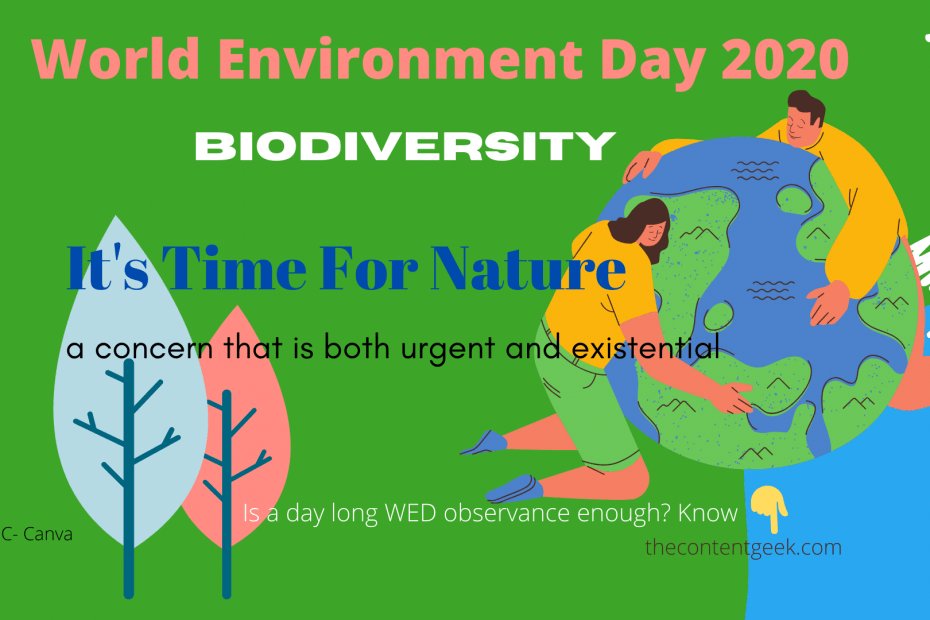 World-Environment-Day-2020
